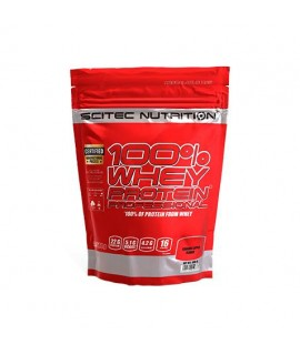 100% WHEY PROTEIN PROFESSIONAL 500 GR.
